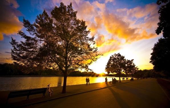 Картинка лето, небо, солнце, деревья, велосипед, парк, река, люди, вечер, прогулка, хорошая погода
