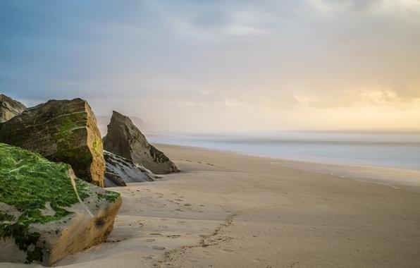 Картинка песок, море, камни, мох