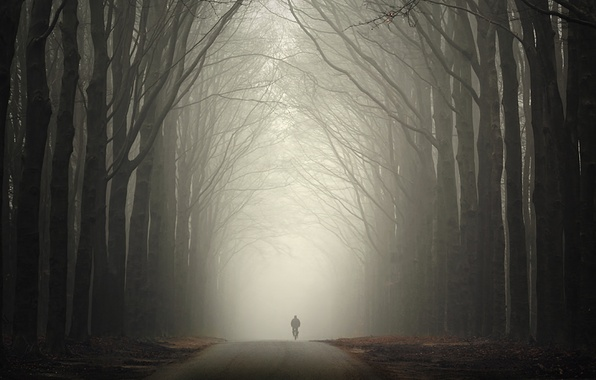 Картинка дорога, осень, лес, туман, человек