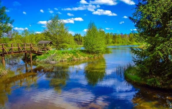 Картинка лес, небо, трава, солнце, облака, деревья, мост, река, беседка, островок
