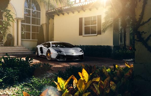Картинка Lamborghini, Front, Sun, White, Matte, Tuning, LP700-4, Aventador, Supercar, Wheels, ADV.1