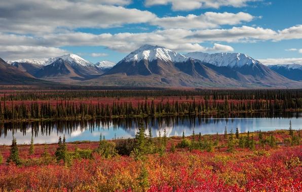 Картинка осень, небо, облака, горы, Аляска, США, леса