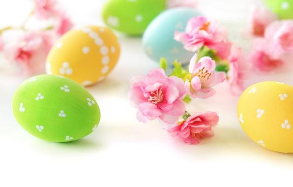 Картинка цветы, яйца, Пасха, flowers, spring, Easter, eggs