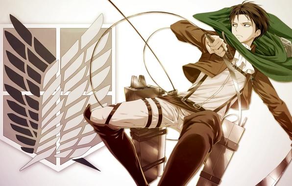Картинка anime, Attack on Titan, Shingeki no Kyojin, Levi