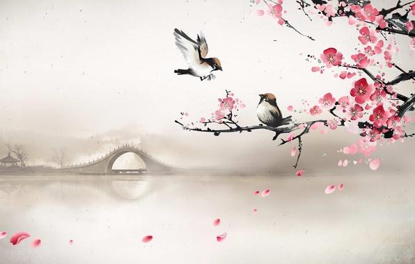 Картинка мост, туман, река, весна, утро, сакура, арт, птички, лепестки сакуры