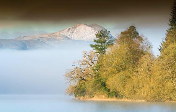 Картинка лес, горы, туман, озеро