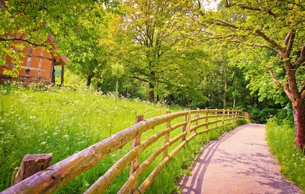Картинка дорога, зелень, лето, трава, деревья, природа, забор, тень, деревянный, домик