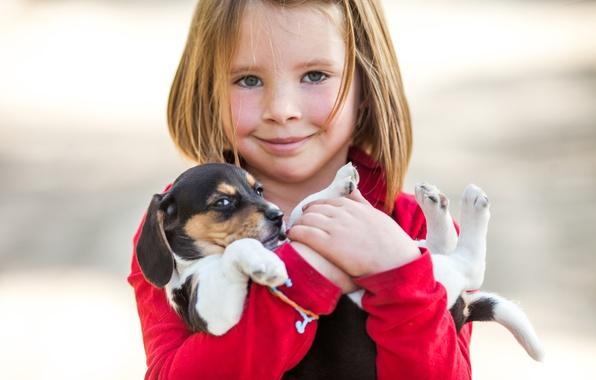 Картинка улыбка, настроение, собака, девочка, щенок, друзья