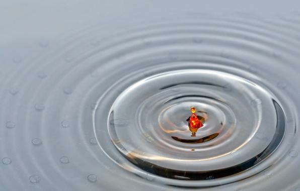 Картинка вода, капли, поверхность, круги, цветная
