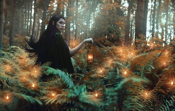 Картинка лес, девушка, свечи