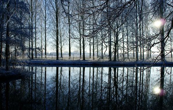 Картинка зима, вода, солнце, снег, закат, ветки, озеро, отражение, река, забор, вечер, ограда, Деревья