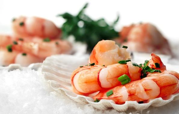 Картинка раковина, лук, креветки, морепродукты