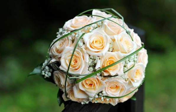 Картинка цветы, розы, букет, желтые, бутоны, свадебный