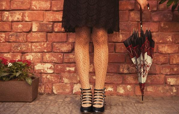 Картинка девушка, цветы, зонтик, фон, обои, ноги, настроения, зонт, платье, wallpaper, girl, цветочки, umbrella, широкоформатные, background, ...