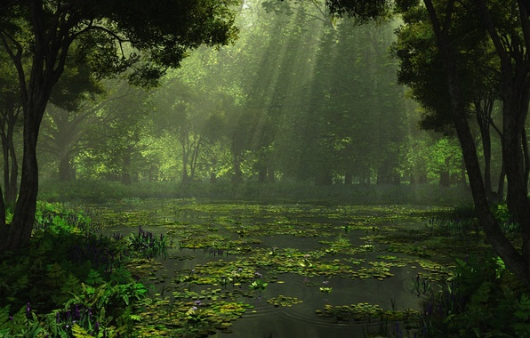 Картинка лес, деревья, природа, озеро, рендеринг