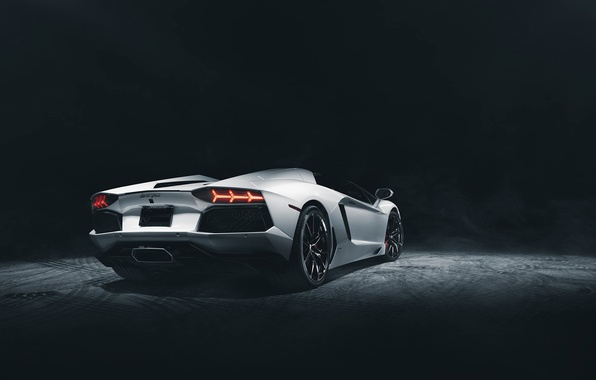 Картинка Roadster, Lamborghini, Dark, White, Studio, LP700-4, Aventador, Supercar, Rear