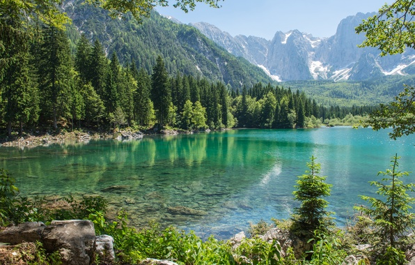 Картинка лес, горы, природа, озеро, елки, forest, nature, mountains, lake, tree