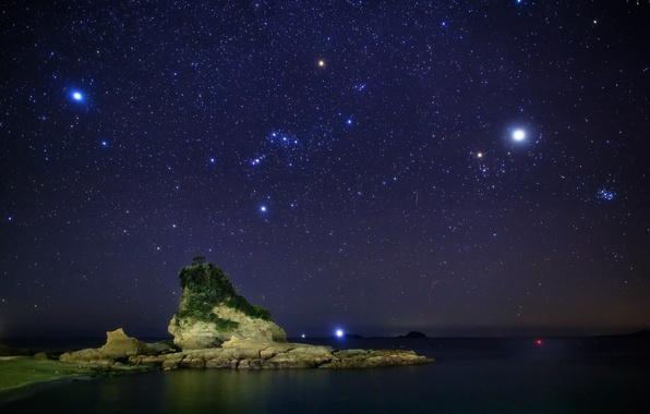 Картинка море, небо, звезды, ночь, камни, дерево, созвездия