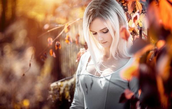 Картинка осень, грудь, взгляд, листья, природа, секси, поза, милая, Девушка, платье, блондинка, girl, sexy, красивая, dress, …
