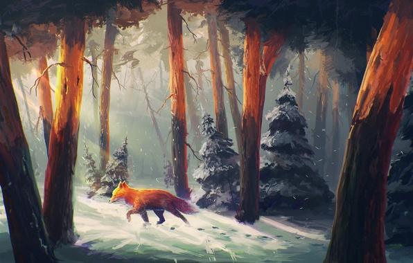 Картинка зима, лес, снег, деревья, следы, елка, арт, лиса