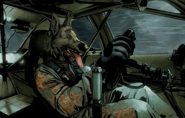 Водитель авто фото