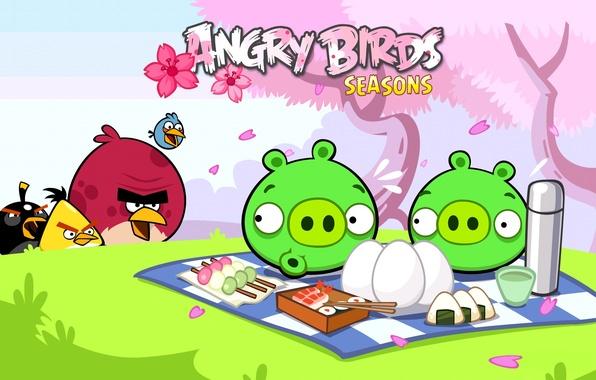 Картинка птицы, яйца, Игра, пикник, свиньи, злые птицы, angry birds seasons