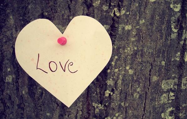 Картинка любовь, дерево, настроение, надпись, сердце, love, heart.чувство