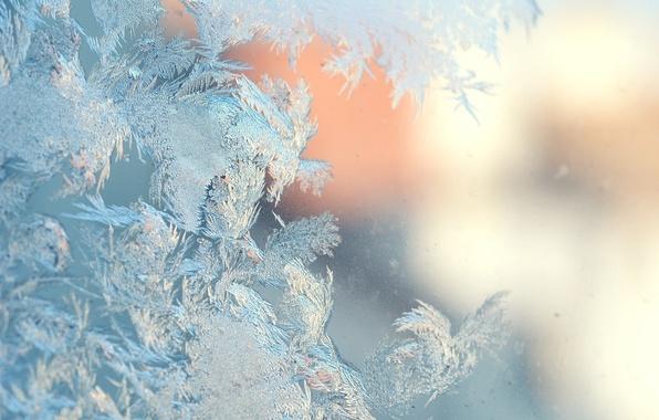 Картинка лед, зима, ice, winter, морозный узор