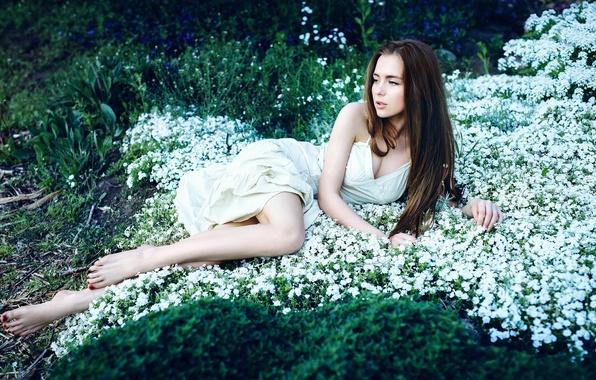 Картинка трава, девушка, милая, платье, ножки, красивая, цветки, длинноволосая, Александра Шульгович