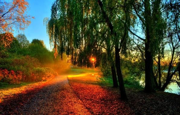 Картинка осень, лес, листья, вода, солнце, лучи, деревья, закат, скамейка, природа, река, hdr, прогулка, forest, river, …