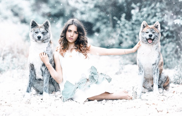 Фото обои собаки, девушка, Protected by the wolves, Alessandro Di Cicco