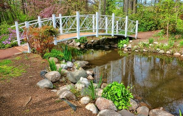 Картинка фото, Природа, Мост, Весна, Пруд, Камни, Парк