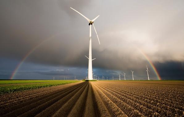 Картинка поле, радуга, ветряки