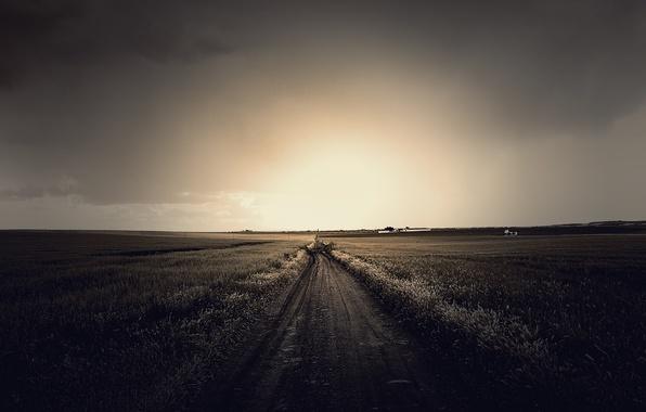 Картинка дорога, поле, небо, трава, солнце, облака, свет, пейзаж, природа, grass, road, sky, field, landscape, nature, …