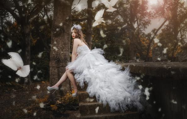 Картинка птицы, стиль, настроение, модель, платье, голуби, азиатка, невеста, свадебное платье