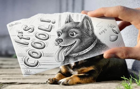 Картинка животное, надпись, рисунок, рука, собака