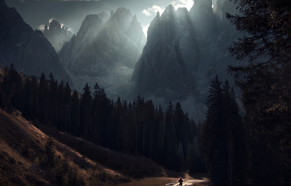 Картинка дорога, лес, свет, горы, человек