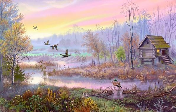 Картинка птицы, дом, рисунок, болото