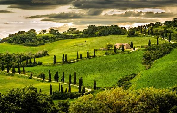 Картинка зелень, небо, облака, деревья, пейзаж, природа, дом, холм, Италия, Italy, Italia, Умбрия, Umbria