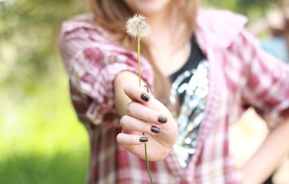 Картинка зелень, девушка, природа, фон, одуванчик, обои, настроения, растение, рука, размытие, клетка, кофта, ногти, широкоформатные, лак, …