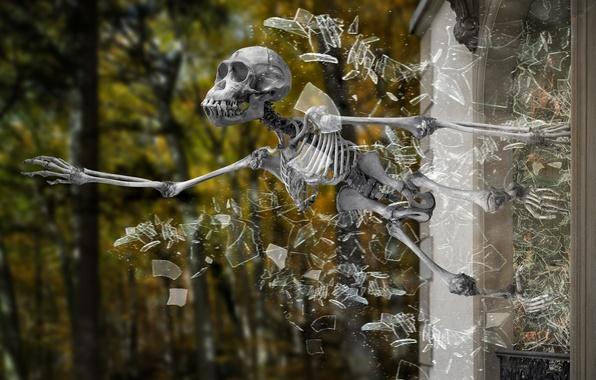 группа скелет музыка скачать