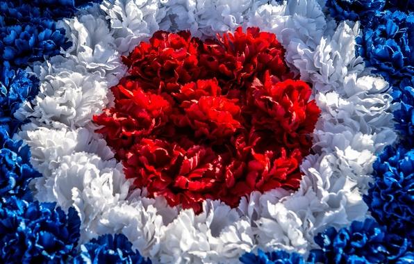 Красное белое новый уренгой - 6a396