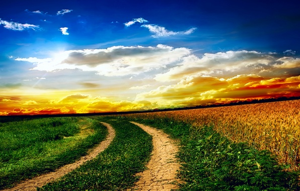 Картинка поле, небо, трава, облака, пейзаж, закат, природа, дороги