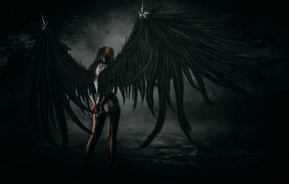 Картинка девушка, поза, крылья, арт, колготки, падший ангел