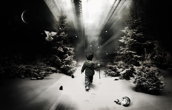 Картинка лес, снег, один, след, мальчик, ребёнок