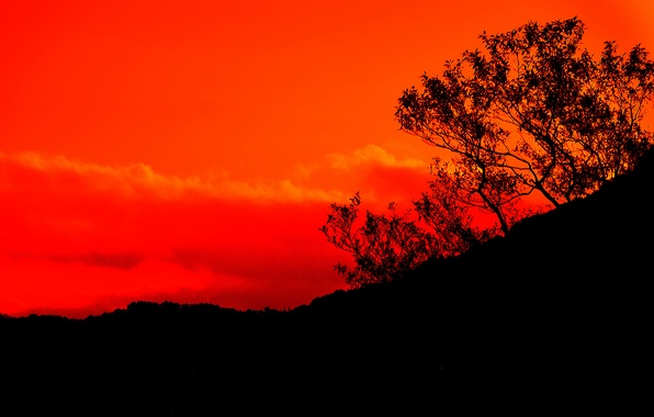 Картинка небо, облака, горы, дерево, силуэт, зарево