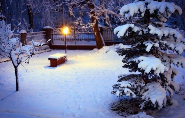 Картинка зима, снег, деревья, природа, елка, ель, освещение, двор, фонарь, ёлка