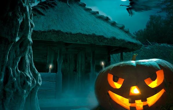 Картинка ночь, страх, Halloween, тыква, moon, Хэллоуин, ведьма, полнолуние, night, holiday, pumpkin, Happy, witch, hounted house
