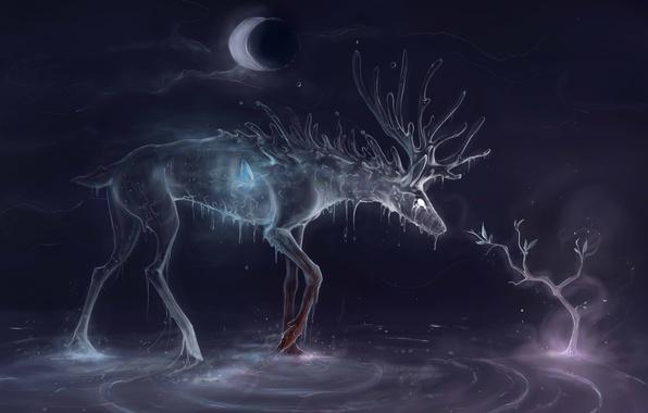 Картинка вода, капли, дерево, луна, бабочка, дух, месяц, олень, арт