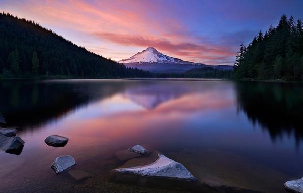Картинка лес, небо, снег, озеро, гора, вечер, зарево
